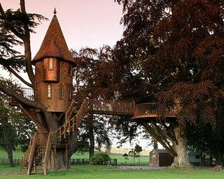 A charming Scottish tree mansion.