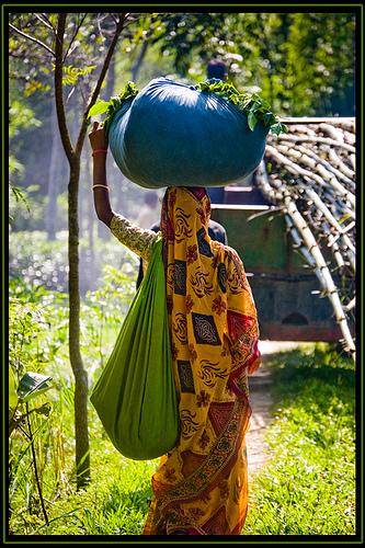 Grameen Bank woman in Bangladesh